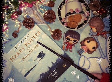 Harry Potter e la pietra filosofale Edizione Illustrata di J.K. Rowling e illustrato da Jim Kay.
